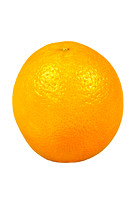 Isolated Orange on White Background with Clipping Path