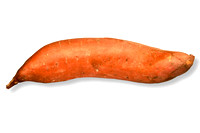 Sweet Potato on White Background with Clipping Path