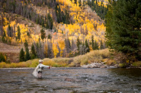 Woman Fly-Fishing in Colorado