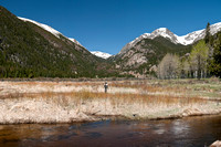 Panorama of Woman Fly-Fishing in the Rockies